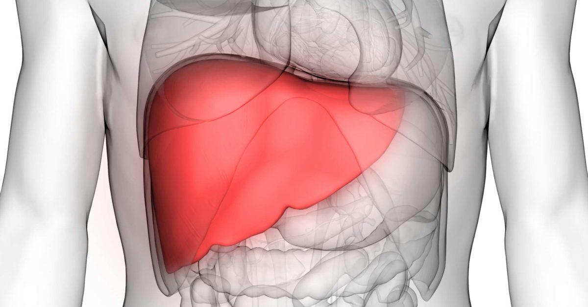 Pediatric Liver Transplant Surgery