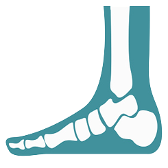 AnteAnkle Arthroscopy Surgery Cost in India